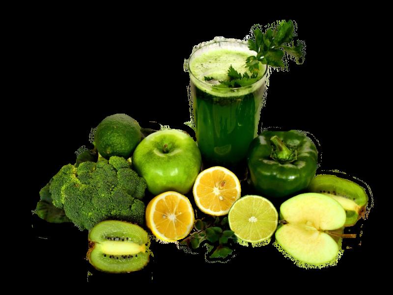 Spezialisierung vegane Ernährung Sylwia Ernesto Feder und Tinte